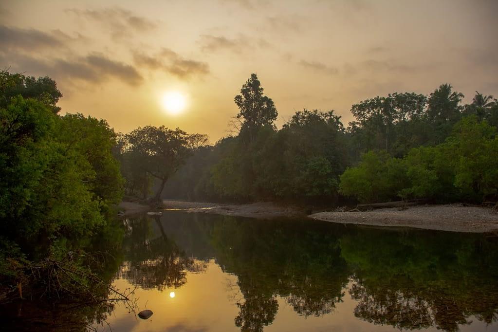 River inside Aralam Wildlife Sanctuary